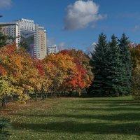 Осенний город :: Владимир Орлов