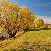 Осень реки :: Владимир Зыбин