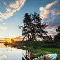 Краски летнего утра :: Татьяна Афиногенова