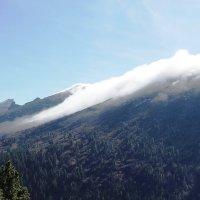 Туман в горах :: Ольга Иргит