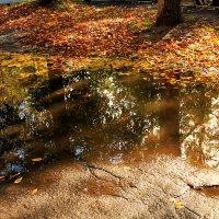 Осенний пейзаж :: Надежда Скотникова
