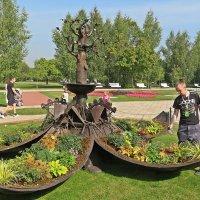 """Волшебный сад """"Яйцо""""(метаморфозы) :: Виталий Селиванов"""