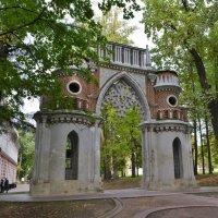Фигурные ворота в усадьбе Царицыно :: Константин Анисимов