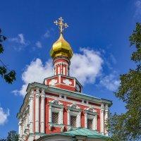 Москва. Новодевичий монастырь :: Николай Николенко