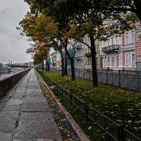 Дождливый день :: Александр
