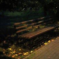 Мёрзнет в парке мокрая скамейка. :: Татьяна Помогалова