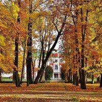 Листопад в парке Кадриорг :: Aida10
