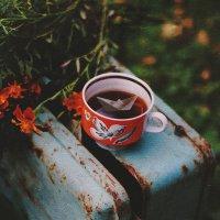 Завари мне осень крепкий чай.... :: Liliya