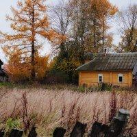 Осень в деревне :: Alexander Royvels