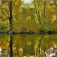 Золотой свет... :: Sergey Gordoff