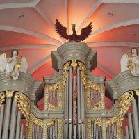 органный зал Кафедрального собора в Калининграде :: elena manas