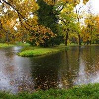 Дождливая погода ,  великолепная природа !!! :: Валентина Папилова