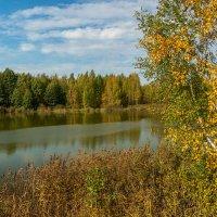 Тёплый октябрь 2 :: Андрей Дворников