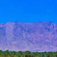 горы в районе Мёртвого моря :: Игорь Герман