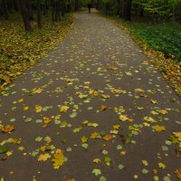 Потому что октябрь и надо на работу :: Андрей Лукьянов