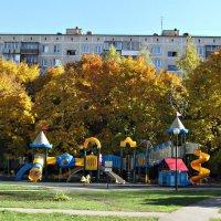 Осень в Подмосковье :: Юрий