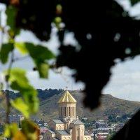 Красавец Тбилиси :: Elena