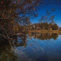 На озере. :: Вадим Басов