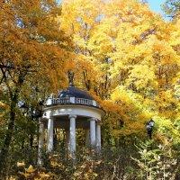 Осень в Царицыно. :: Лариса Исаева