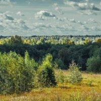 Псковщина :: Михаил Манеев