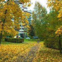 Прогулка по осеннему городу (2) :: Виталий