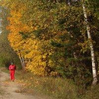 Осенний марафон :: Татьяна Георгиевна