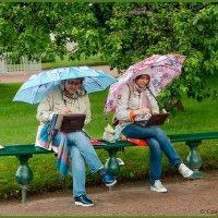 Любимому делу, дождь не помеха. :: Maxim Semenov