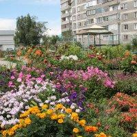 Двор в цветах :: Олег Афанасьевич Сергеев