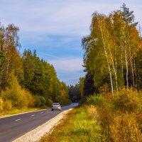 Осенняя дорога :: Сергей Цветков