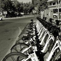 Мадрид.Велосипеды на прокат... :: Елена Олейникова
