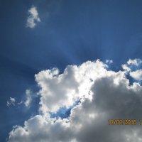 На что похожи облака? 5 - в углу бычок :: Светлана Рябова-Шатунова