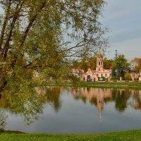 Алтуфьевский пейзаж :: Olcen Len