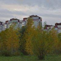 осень в городе :: Наталия П