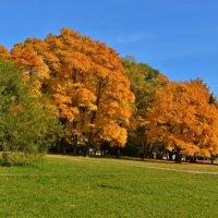 Золотая осень в усадьбе Коломенское :: Константин Анисимов