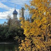 Золотая осень Красного Перекопа, на берегу Которосли :: Николай Белавин