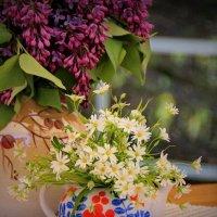 Майские ароматные прелести :: Татьянка *