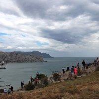 Вид на залив. :: Вера Литвинова