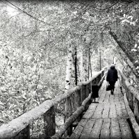 По мосточку в осень. :: Любовь