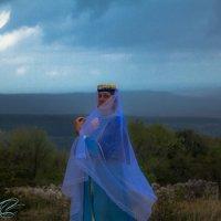 Моя принцесса :: Алексей Векшарев
