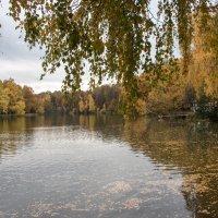 Осень в Измайлове. :: Владимир Безбородов