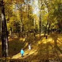 Осень в Архангельском. :: tatiana