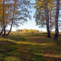 Лесные  ворота :: Геннадий С.