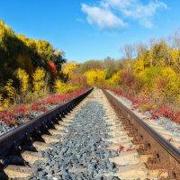 Дорога в осень :: Igor Yakovlev