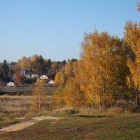 Золотые деньки октября :: Татьяна Георгиевна