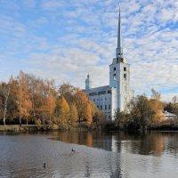 Золотой октябрь в Петропавловском парке Ярославля :: Николай Белавин