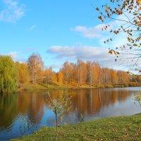 Осень в парке :: Надежда Постникова
