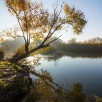 Утро на Донце. :: Михаил Кашанин