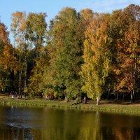"Парк ""Кузьминки "" :: Vorona.L"