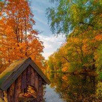 Осень в парке :: Дмитрий Рутковский