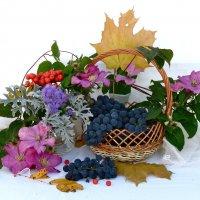дары октября :: НАТАЛЬЯ